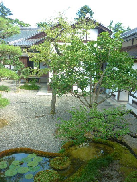 hikone-museum05
